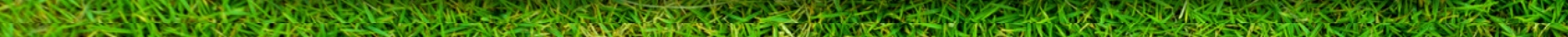 Grass Line Separator